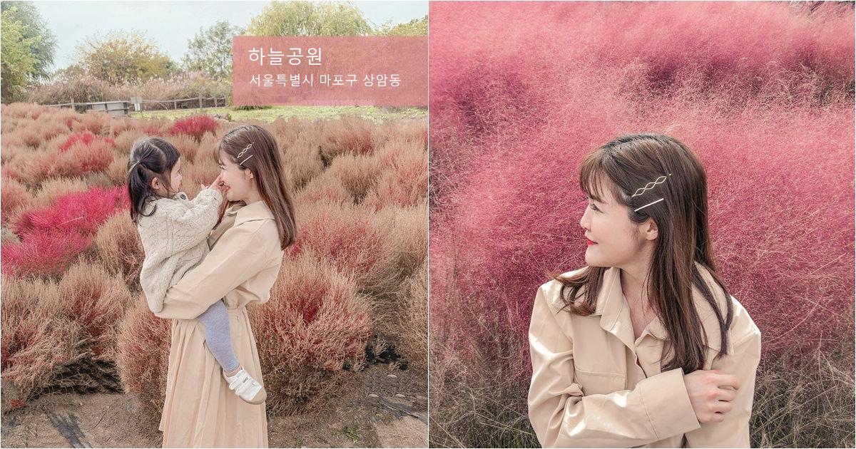 【韓國首爾】熱門ig景點 – 天空公園油畫波波草原、仙級粉紅芒草、兩水頭,kkday半日遊
