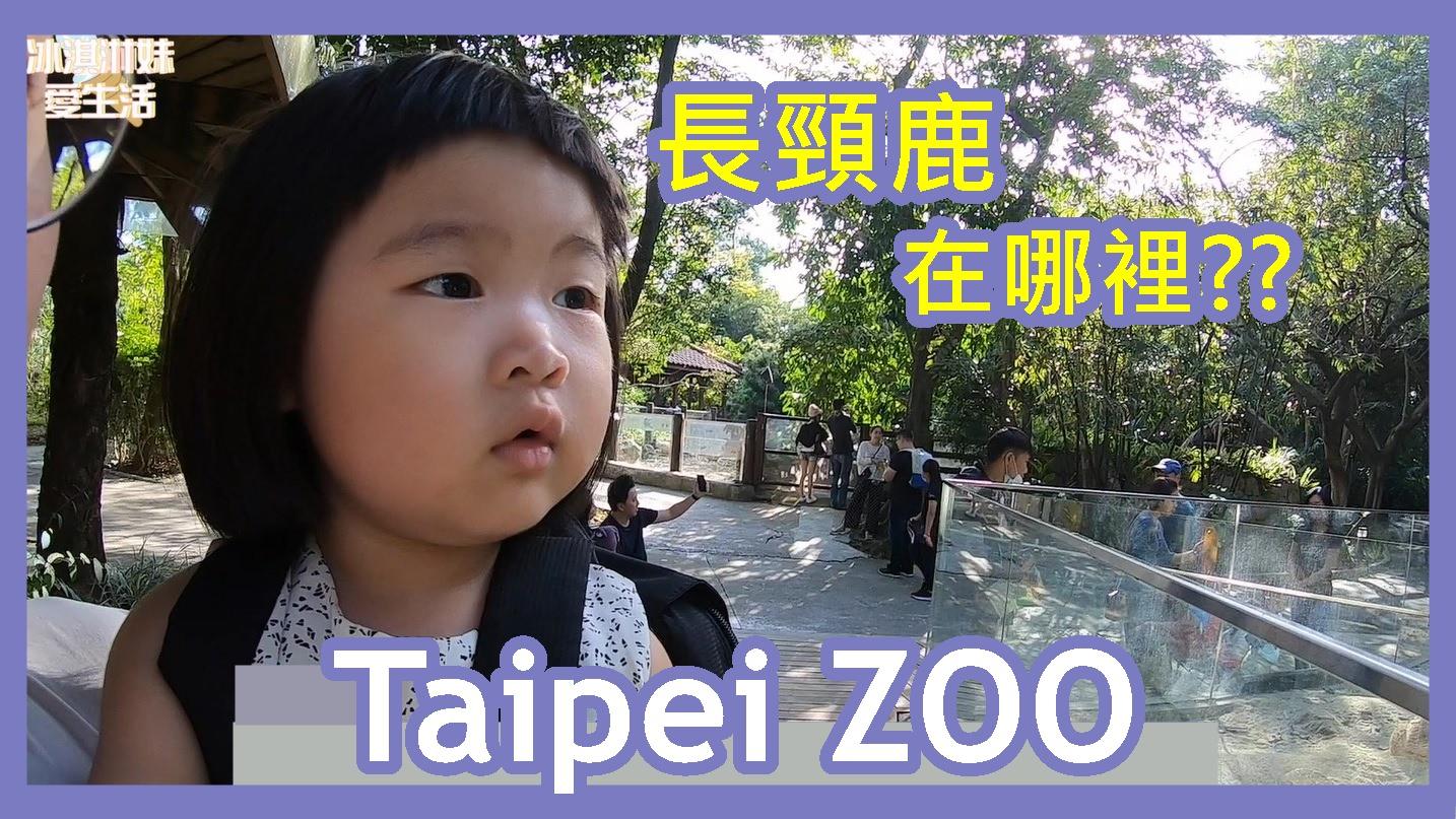 【台北景點】台北市立動物園 教你怎麼找長頸鹿最輕鬆!taipei zoo
